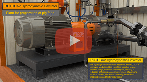 ROTOCAV hydrodynamic cavitator for the preparation of pig feed
