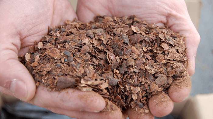 Extraction from cocoa bean shell waste with ROTOCAV cavitator