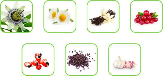 Some examples of natural matrices which can be treated with the ROTOCAV hydrodynamic cavitator in the food industry